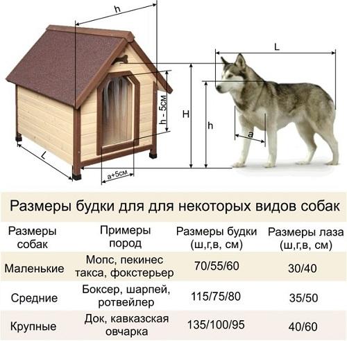 Корм для собак лакомства