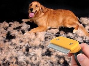 Правильный уход за шерстью собаки: чем расчесывать и как вычесать колтуны?
