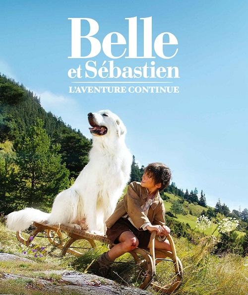 Верный друг и истинный аристократ: пиренейская горная собака