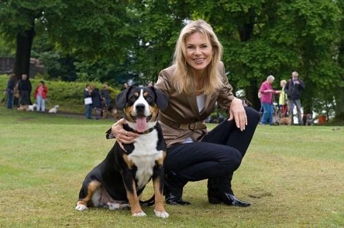 Подробнейший обзор породы собак: энтлебухер зенненхунд